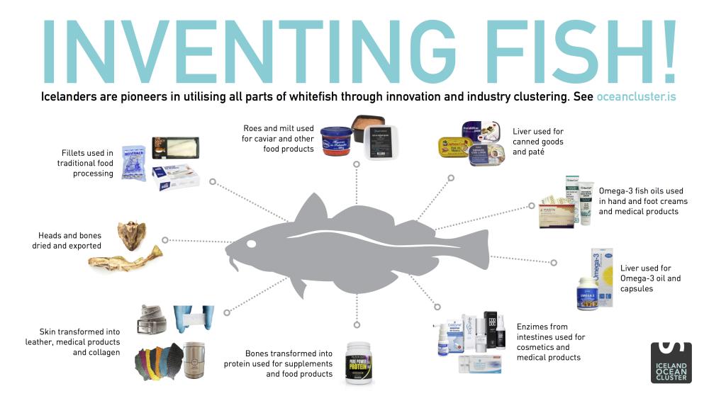 Inventing Fish