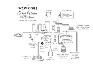 Fishvaluemachine