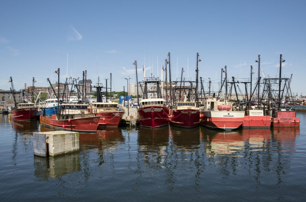 THE NEW BEDFORD OCEAN CLUSTER ANNOUNCES ITS INCORPORATION